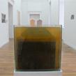 """""""Aquarium"""" - 2013 (25 x 25 cm)"""
